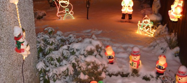 Here is a whole garden shot of the Christmas Lights