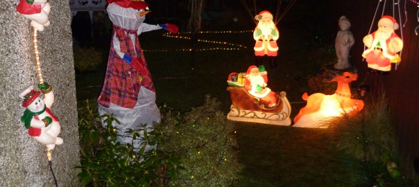 This is a shot of the right hand side of the display in the Back Garden which is visible from the Living Room