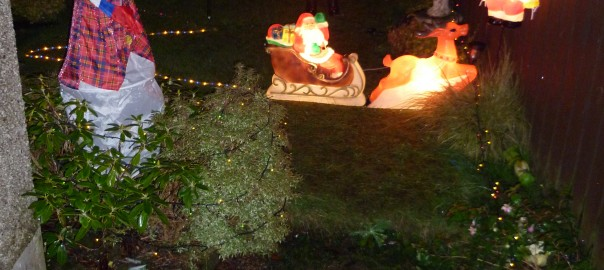 A zoomed in shot of the back garden display in 2011