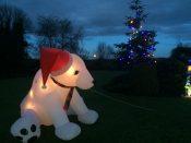Polar Cub Inflatable